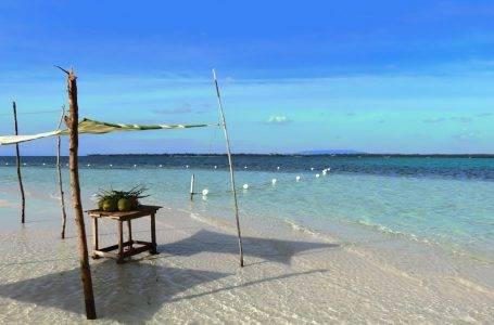 Wyspa Bohol – Filipiny. Wszystko, co musisz zobaczyć!
