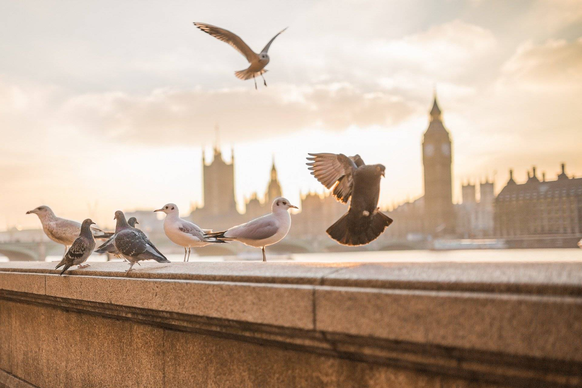Londyn - miejsca, których nie możesz przegapić