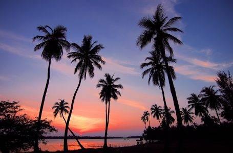 Sri Lanka najciekawsze miejsca